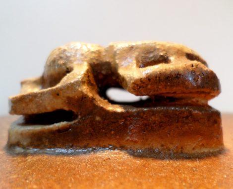 Scarabée profil
